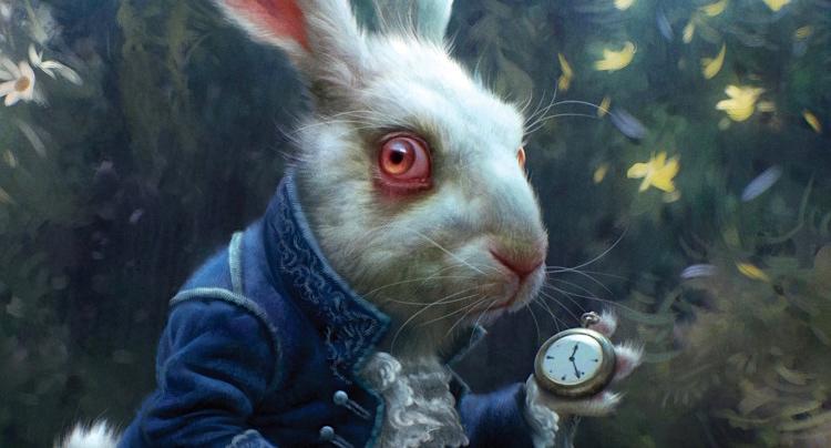 Rabbit in the Hat kostenlos spielen | Online-Slot.de