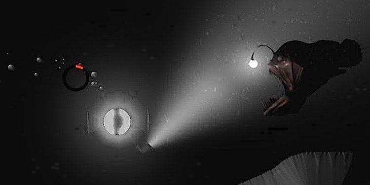 Dive Inside